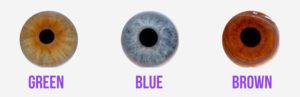 home eye types 300x97 Home